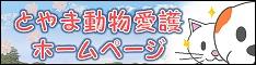 banner2341